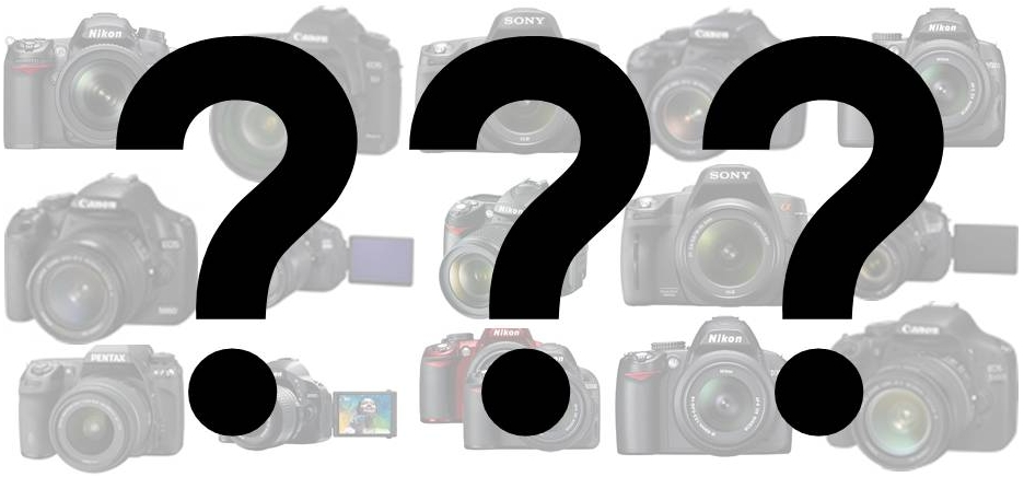 Which camera should I buy ?