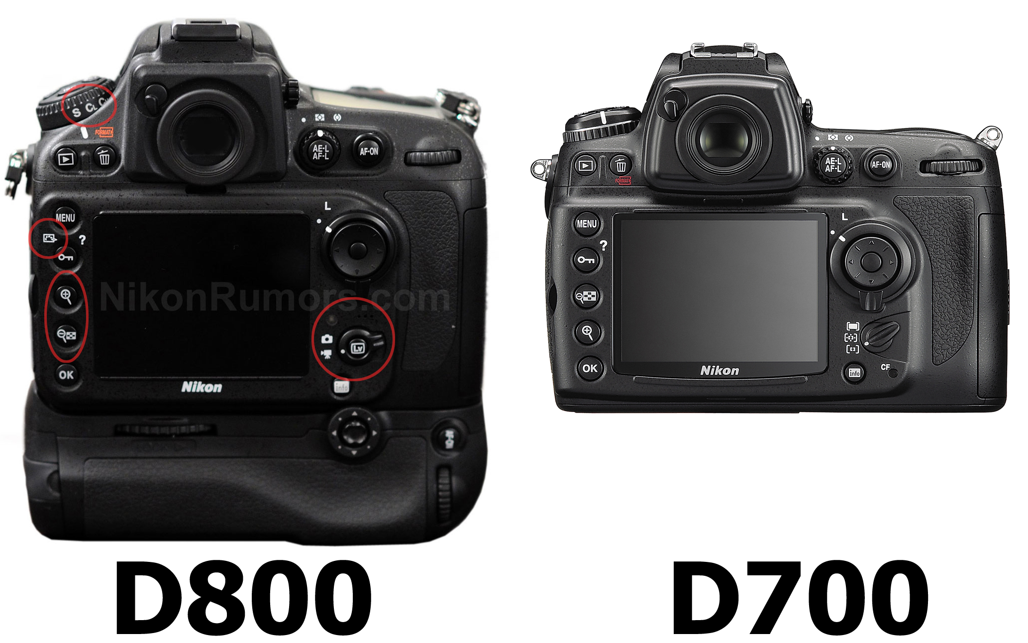 Nikon D800: The mystery of 36