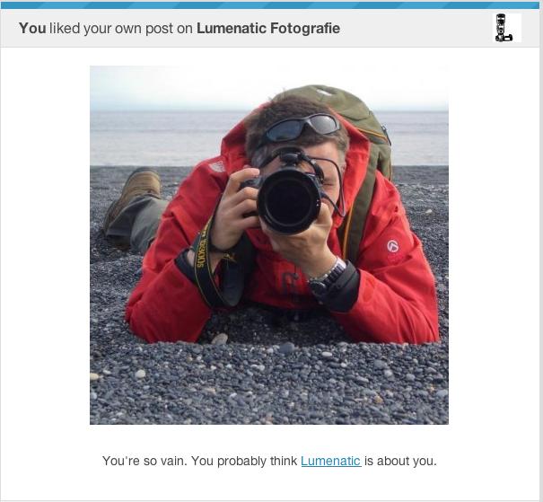 WordPress has a sense of humor