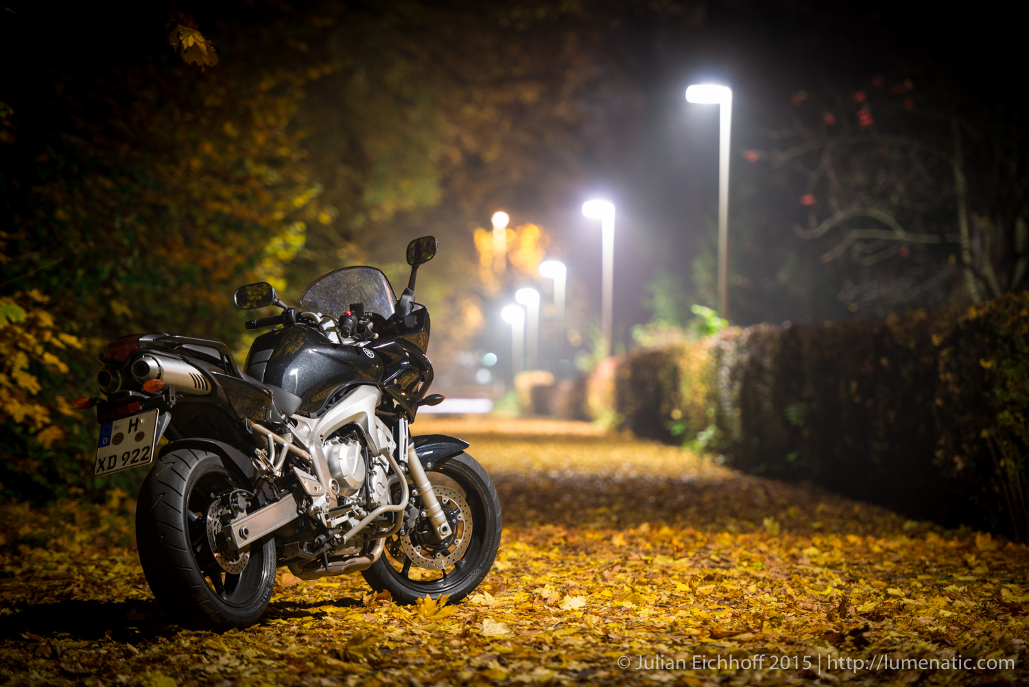 Bikes in autumn foliage, part 2: Nighttime