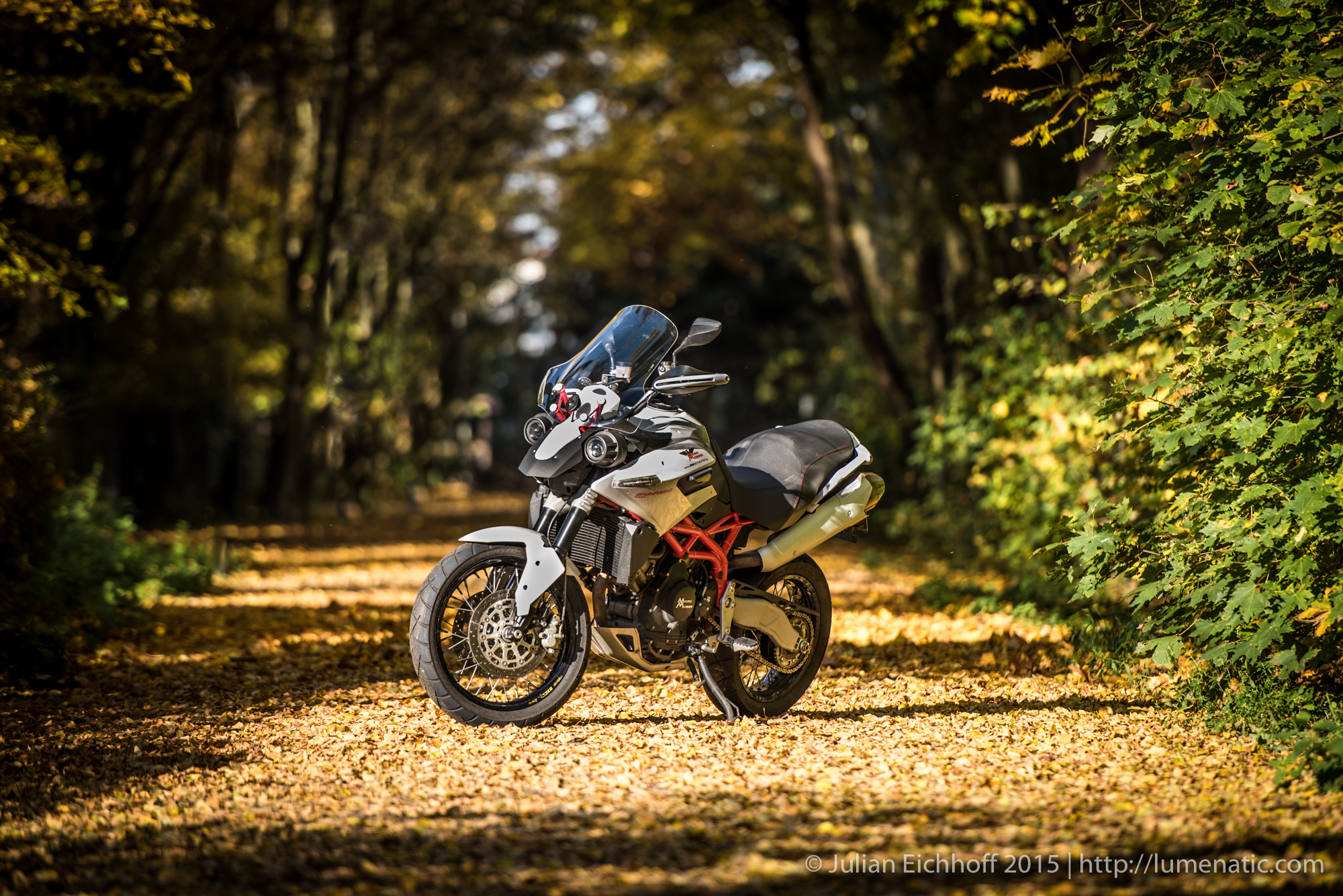 Bike in autumn foliage, part 1: Daytime