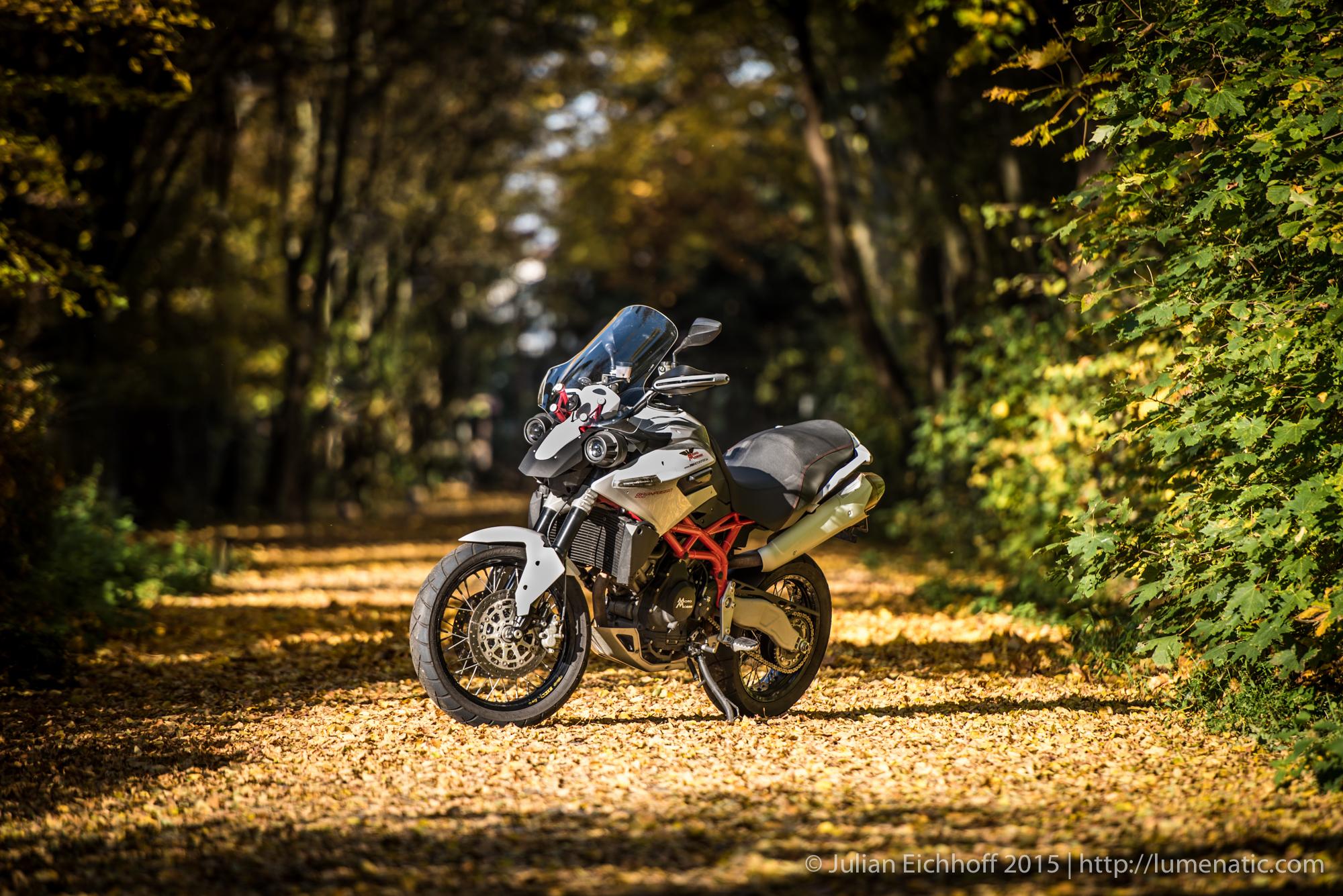 Bike in autumn foliage, part 1: Daytime