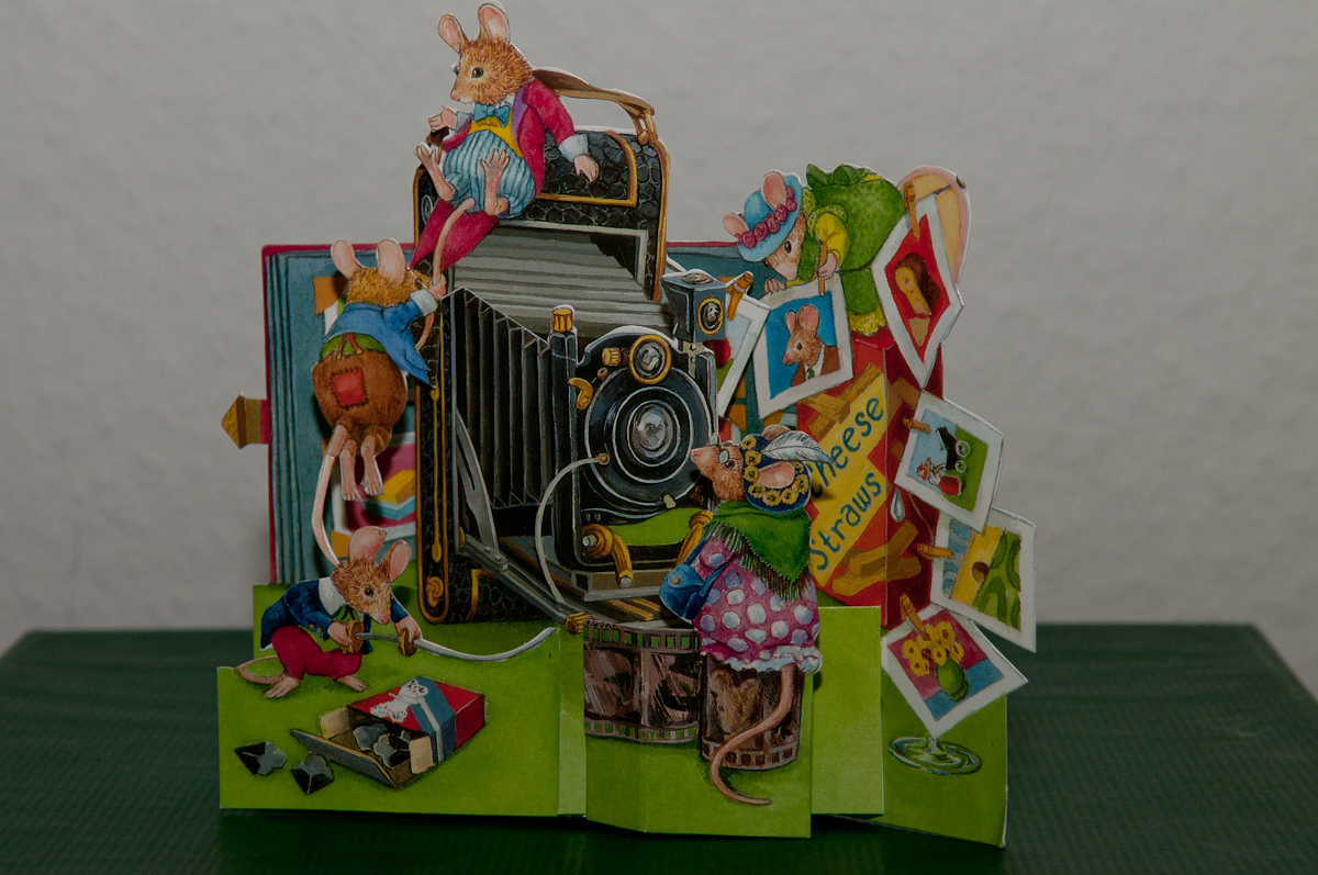 Birthday cards for photographers